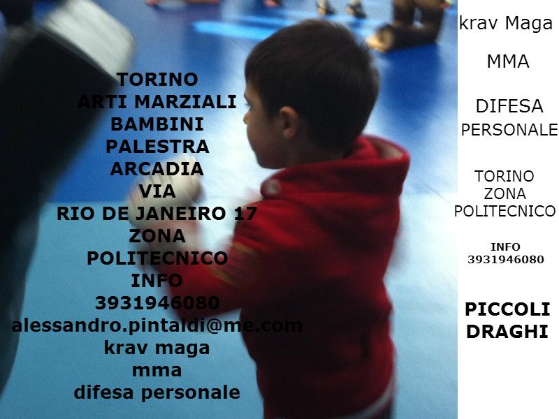 arti-marziali-torino-bambini-palestra-arcadia-zona-politecnico-via-rio-de-janeiro-17-piccoli-draghi-krav-maga-difesa-personale-mma