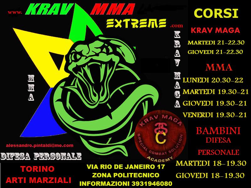 torino-arti-marziali